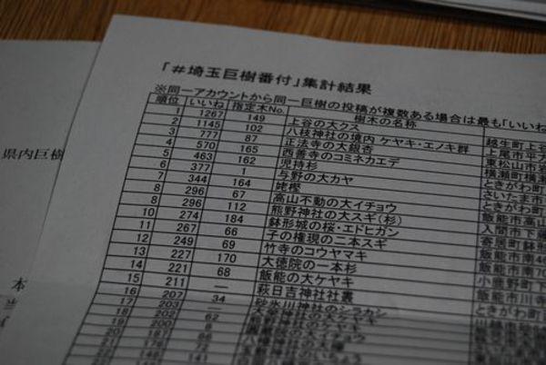 #埼玉巨樹番付